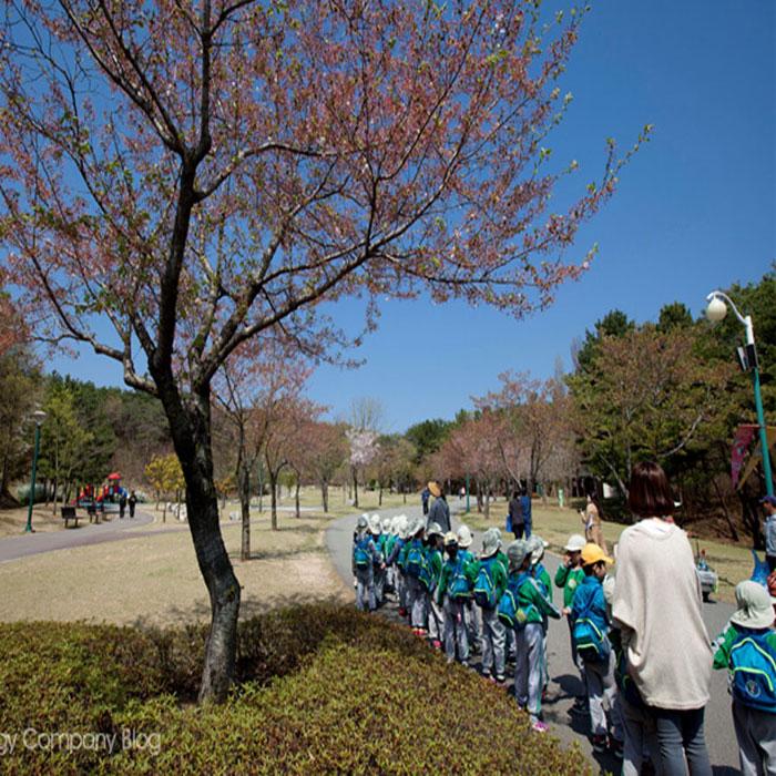 울산대공원, 울산 시민들에게 1평의 쉼터를 제공하다