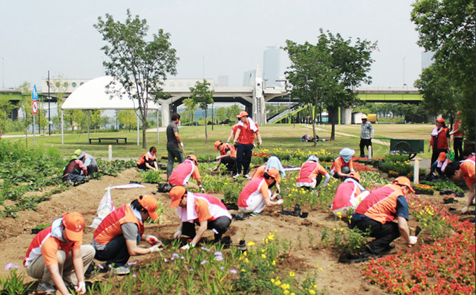 한강공원에 꽃을 더하다  한강 꽃길 만들기