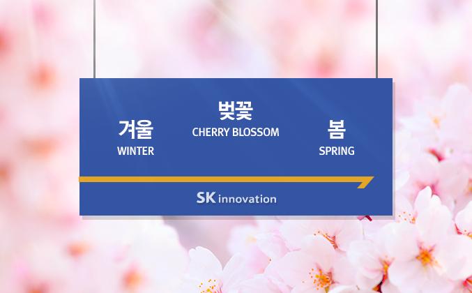 벚꽃 언제 피나요? 2016 벚꽃 개화 시기와 지하철로 갈 수 있는 벚꽃 명소