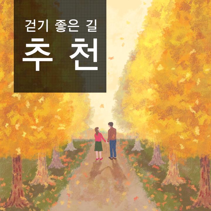 서울 걷기 좋은 길부터 걷기운동의 효과, 바른 자세까지! 가을 걷기의 모든 것