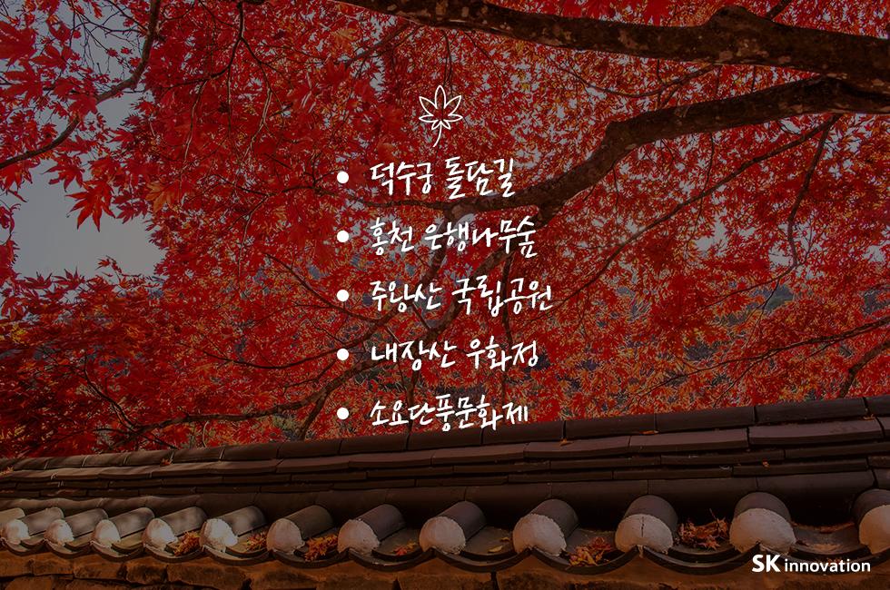 단풍시기_본문_03