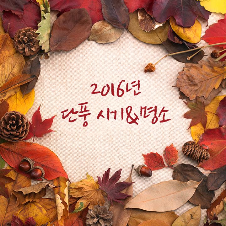 2016년 첫 단풍 시기는 언제? 가을 단풍 시기와 단풍 명소 소개