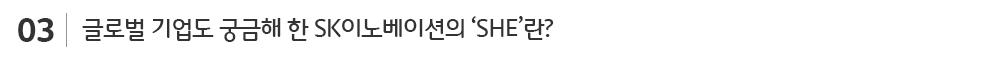 SHE경영_sub_03