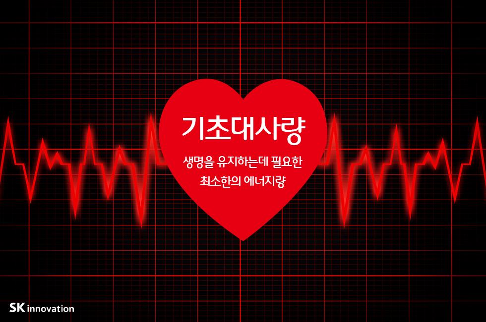 기초대사량_본문_01