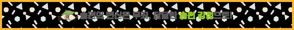 SKI_서브타이틀_981X100-04