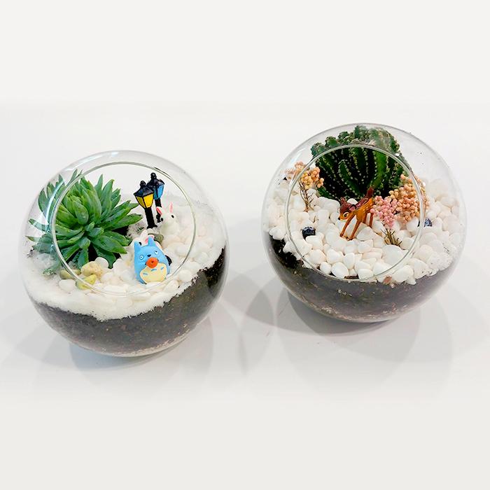 미세먼지를 무찌르는 나만의 실내 정원, 테라리움 만들기